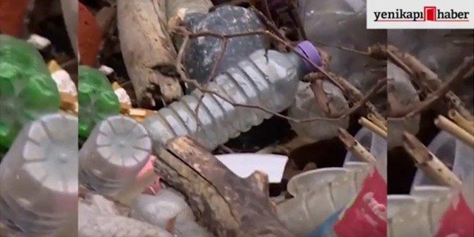 Norveç, plastik çöp sorununu böyle çözdü!