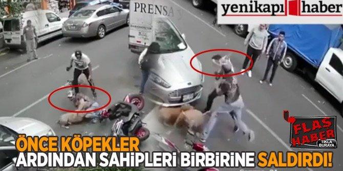 Önce köpekler, ardından kendileri birbirine saldırdı!