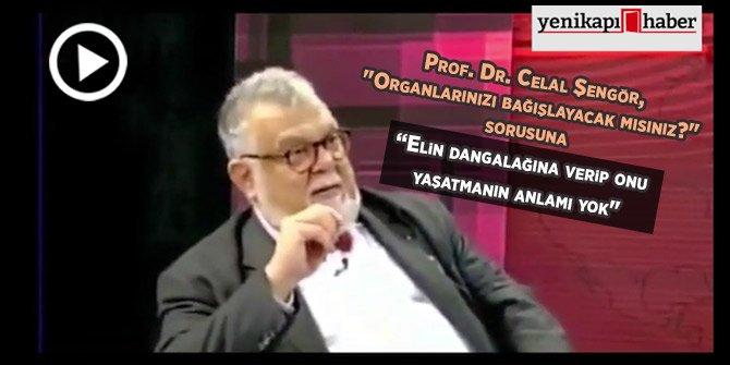 Prof. Şengör: Elin dangalağını yaşatmanın anlamı yok